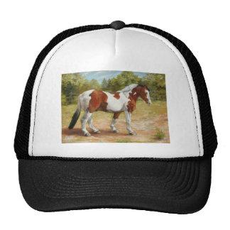 Paint Horse.jpg Cap