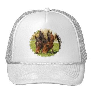 Paint Horse Love  Baseball Hat