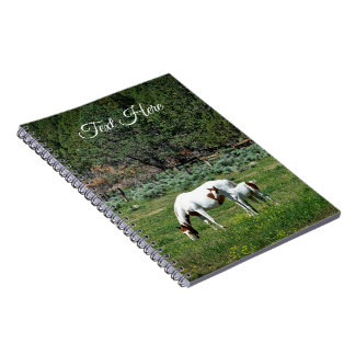 Paint Horse Mare and Foal Personalized Notebook