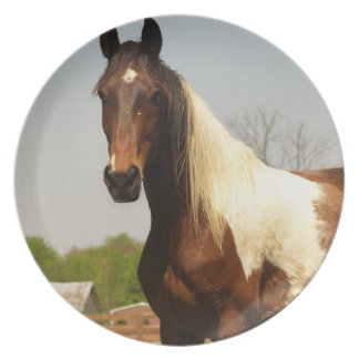 Paint Horse Plate