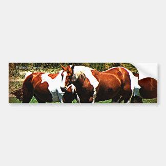 Paint Horses Bumper Sticker