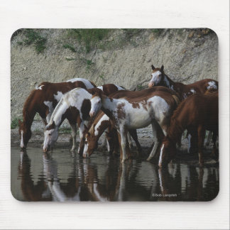 Paint Horses Drinking Mouse Pad