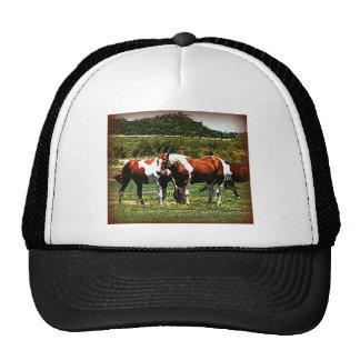 Paint Horses Trucker Hat