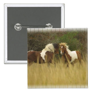 Paint Ponies in Field Square Button