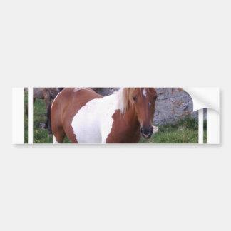 Paint Pony Bumper Sticker