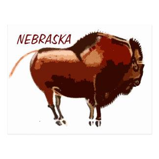 painted bison Nebraska postcard