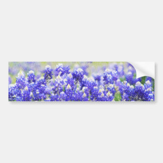 Painted Bluebonnet Long Sticker