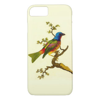 Painted Bunting Bird iPhone Case