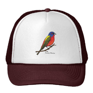 PAINTED BUNTING MESH HATS