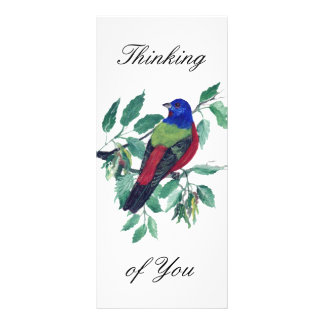 Painted Bunting Thinking of You Custom Rack Cards