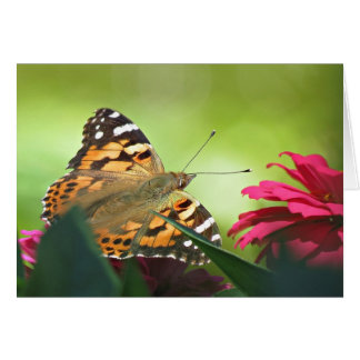 Painted Butterfly and Zinnias Card