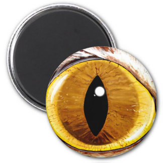Painted Cat's Eye 6 Cm Round Magnet