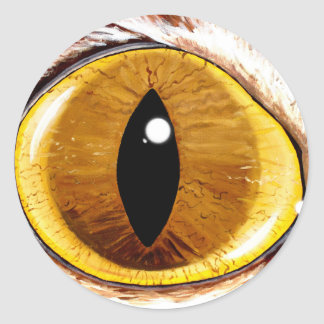 Painted Cat's Eye Classic Round Sticker
