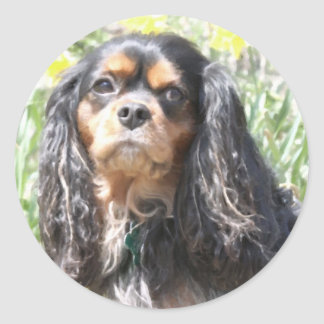 Painted Cavalier King Charles Spaniel Classic Round Sticker