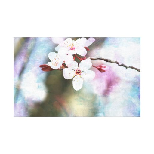 Painted Cherry Blossom Gallery Wrapped Canvas
