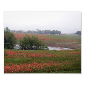 painted countryside photo