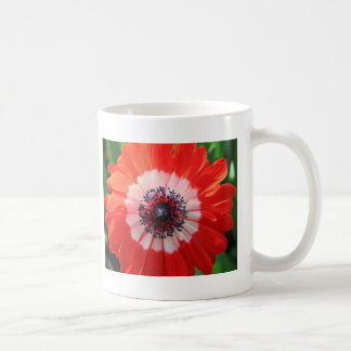 Painted Daisy, bright red! Coffee Mugs
