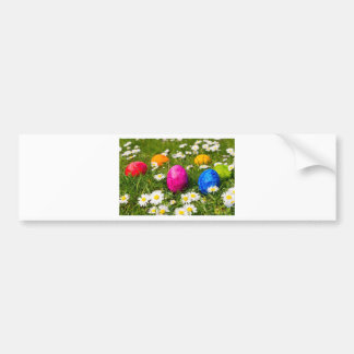 Painted easter eggs in grass with daisies bumper sticker