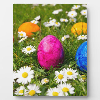 Painted easter eggs in grass with daisies plaque
