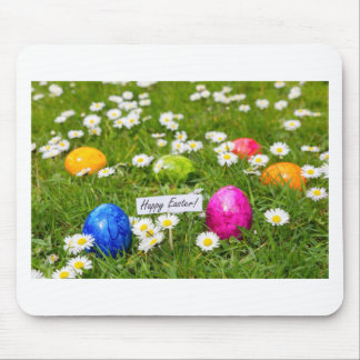 Painted Easter eggs in grass with white daisies Mouse Pad