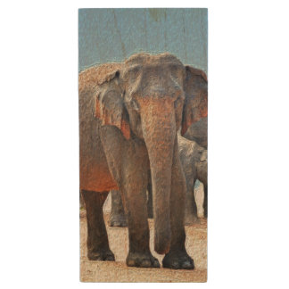 Painted Elephant in Desert Wood USB Flash Drive