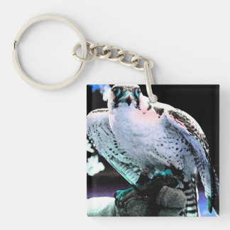 Painted Falcon Key Ring