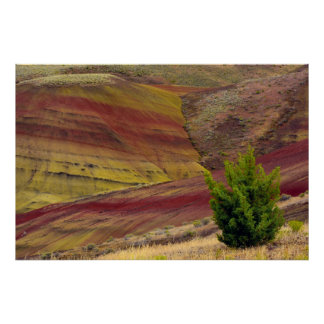 Painted Hills, Mitchell, Oregon, USA Poster
