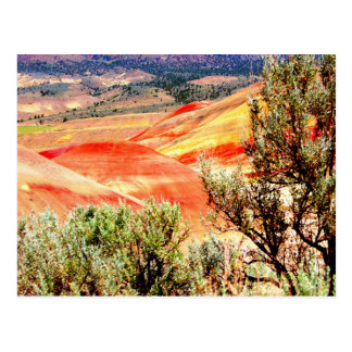 Painted Hills Oregon Postcard