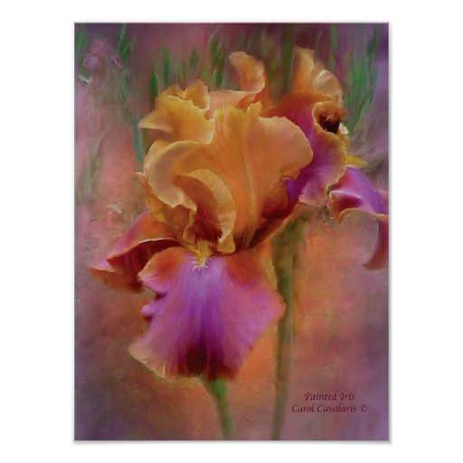 Painted Iris Art Poster/Print