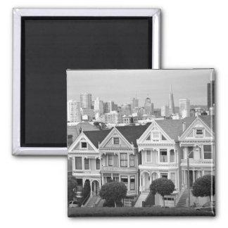 Painted Ladies: San Francisco Magnet
