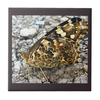 Painted Lady Butterfly Ceramic Tile