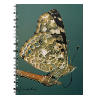 Painted Lady Butterfly Close-up Spiral Note Book
