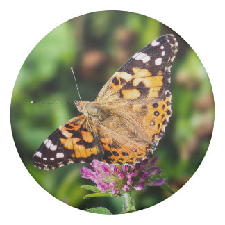 Painted Lady Butterfly Eraser