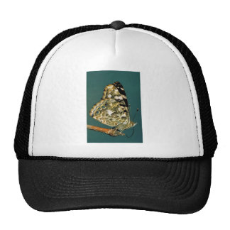 Painted lady butterfly trucker hats