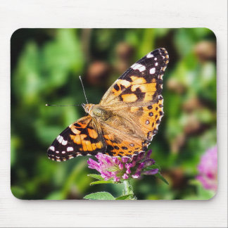 Painted Lady Butterfly on Clover Mousepad