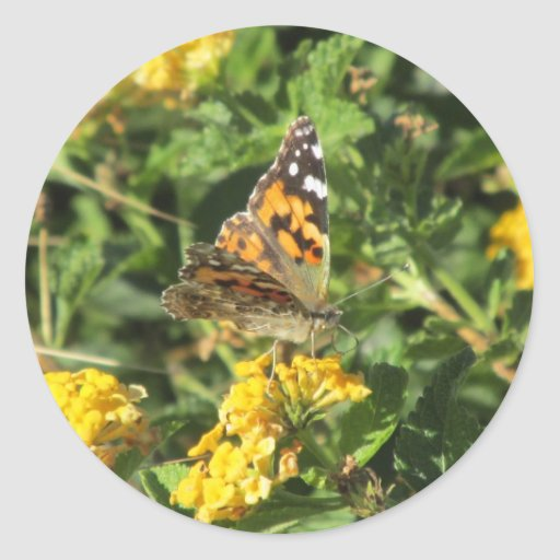 Painted Lady Butterfly on Lantana Blooms Round Stickers