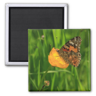 Painted Lady Butterfly Square Magnet