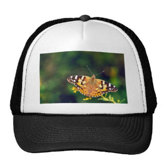 Painted lady on Goldenrod Mesh Hats