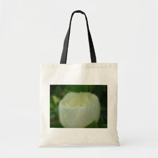 Painted Magnolia Budget Tote Bag