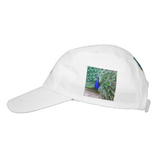 painted peacock hat