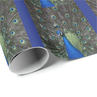 Painted Peacock Wrapping Paper