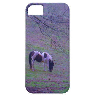 Painted Pony , horse in a purple aqua field iPhone 5 Cases