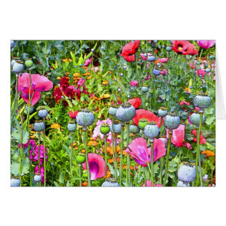 Painted Poppies II Card
