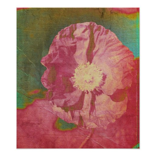 Painted Poppy Poster