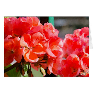 Painted Red Geraniums Blank Card