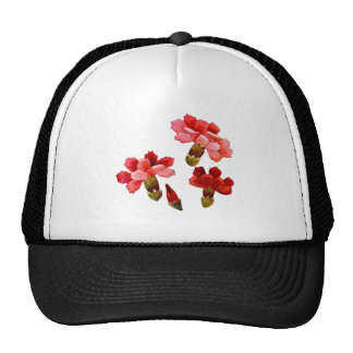Painted Red & Pink Carnations Cap