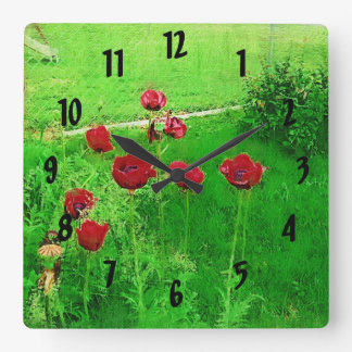 Painted Red Poppies In Bloom Square Wall Clock