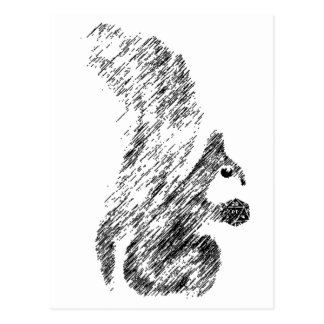 Painted Squirrels Postcard