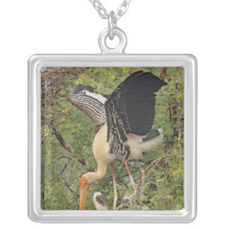 Painted Stork & youngones,Keoladeo National Pendants