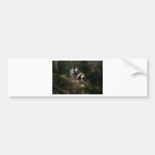 Painted storks in a nest bumper stickers